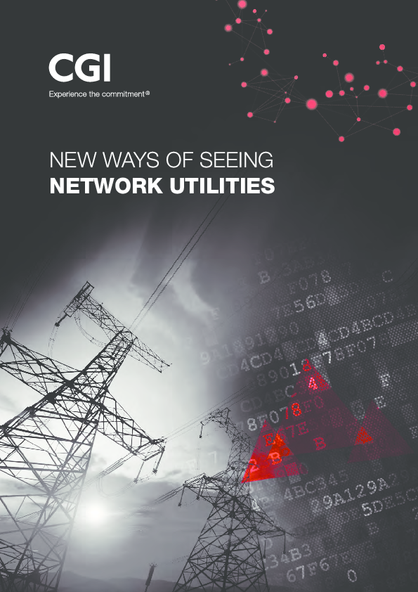 New Ways of Seeing Network Utilities – Optimized Network Utility