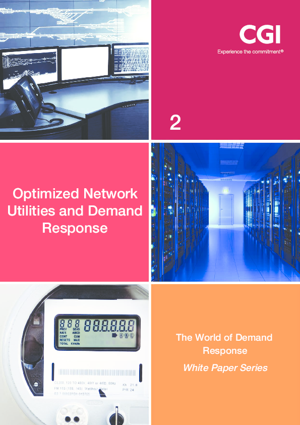Optimized Network Utilities and Demand Response