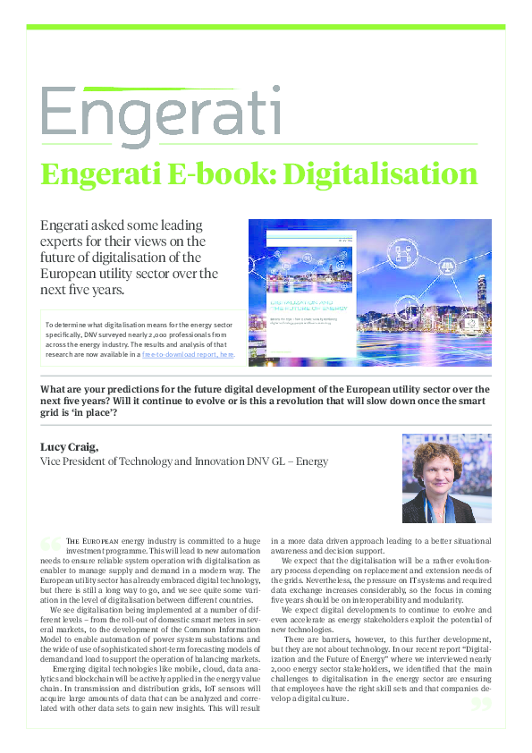 E-book: Digitalisation