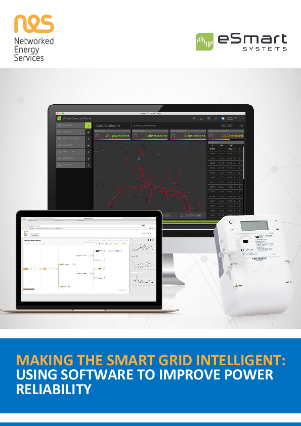 Making the Smart Grid Intelligent: Using Software To Improve Power Reliability