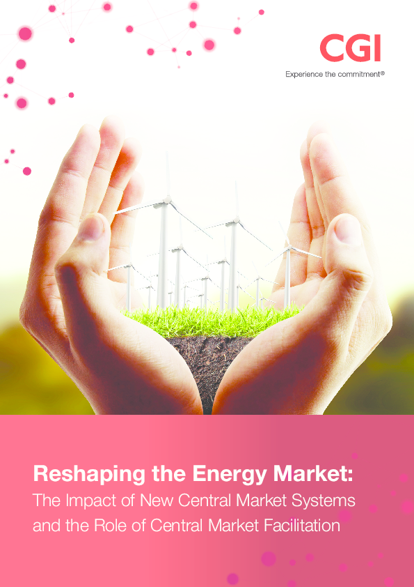Reshaping the Energy Market: The Impact of New Central Market Systems and the Role of Central Market Facilitation