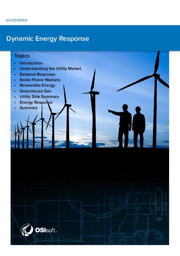 Dynamic Energy Response